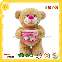 Build A Brown Teddy Bear Stuffed Animal for Gift