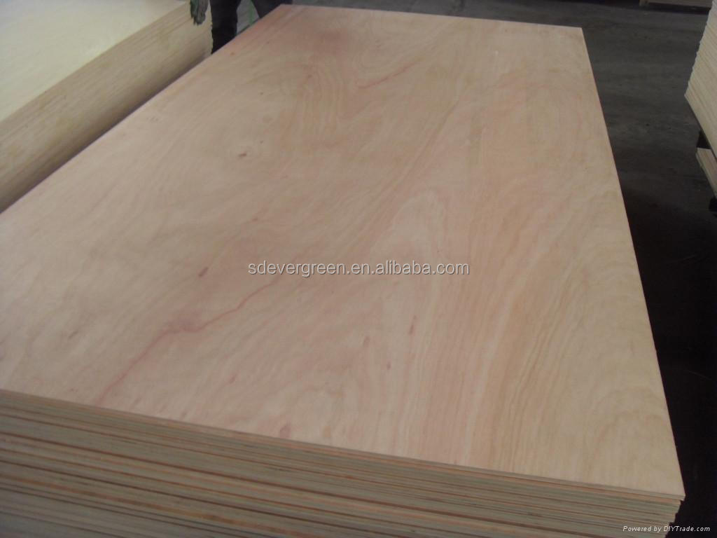 natural plywood from Weifang Evergreen Wood factory