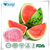 high quality Watermelon powder factory direct sale and good price
