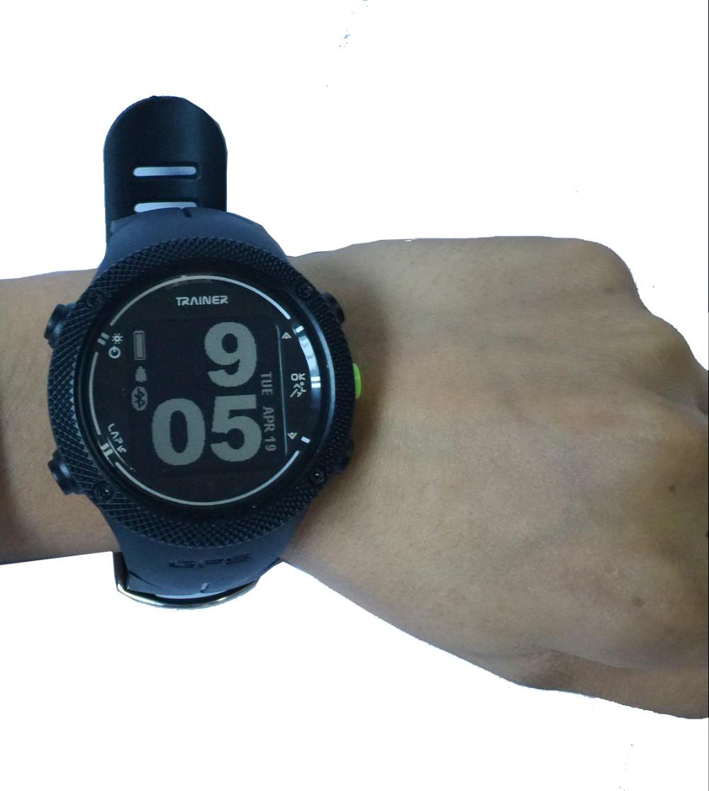DGF-03.jpg