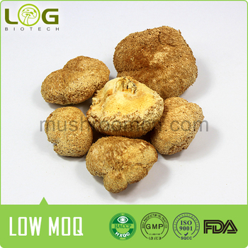 Good quality Dried Lion's Mane mushroom