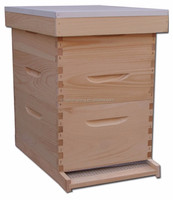 10 frame bee hive box including plastic wax foundations and frames