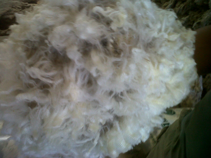 Merino wool, Fleece