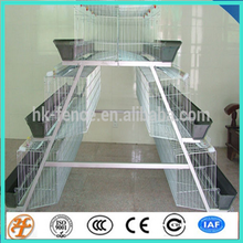 A type multi-tier poultry cages for layer chickens Type and Q235 wire-steel Material Poultry Equipment Price