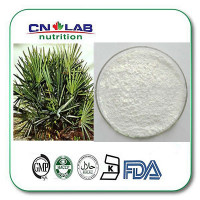 Inhibit Prostate Hyperplasia Saw Palmetto Extract Powder from American Saw Palmetto extract powder