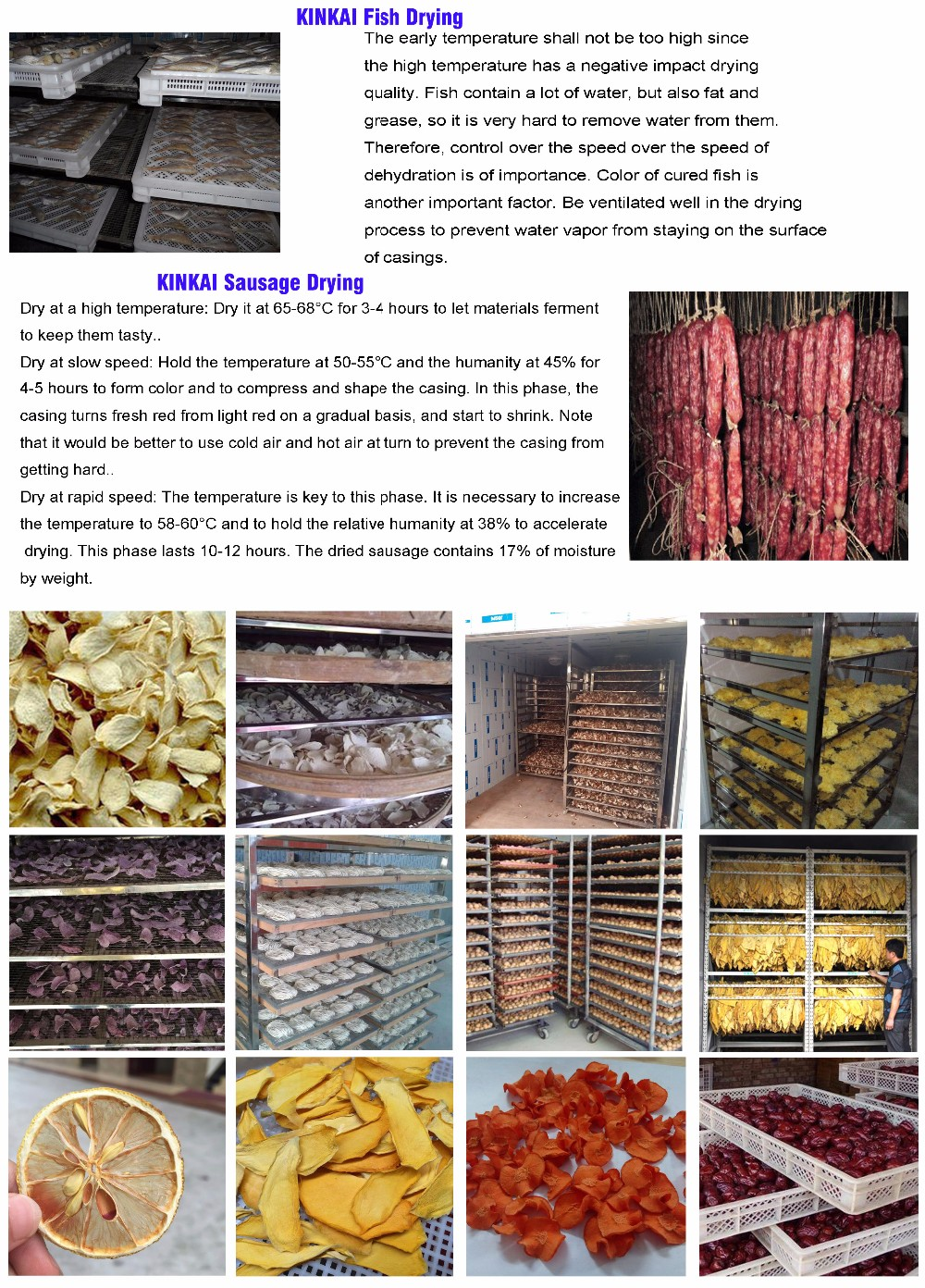 Fruit and vegetable dehydrator machine/ carrot/ onion drying oven for commercial use