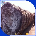 Africa hot high quality sapelli wood