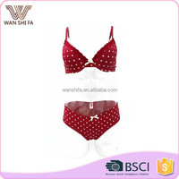 Low price girl favorite wave point printing nylon sexy fancy bra panty set