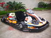 1 man go kart fast cheap/1 seat go kart/160cc 200cc honda go kart orders are welcome