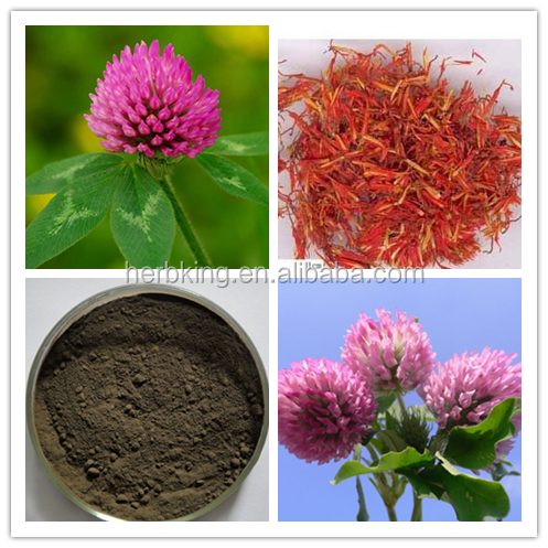 Red clover extract,8%,20%,40%,60% red Clover Isoflavones