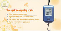 Factory Manufacture High Quality Straight Fishing Scale/price computing scale