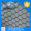 China Lowest Price Galvanized Hexagonal Wire Netting/Chicken Mesh
