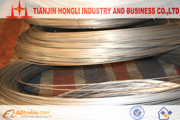 BWG8-25 Chinese Tianjin Hot Dipped Galvanized Steel Wire