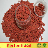 China Supplier Price Ningxia Dried Organic