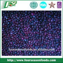 exporting frozen blueberry good price supply2016 Four Season Foods