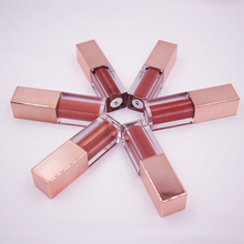 6 colors lip gloss no labels Shimmer Nude Color Lip Gloss shiny Lipgloss private label lip gloss