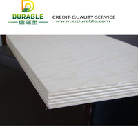 18mm D/E Grade E2 Glue Poplar Core birch plywood / white wood coated plywood for export