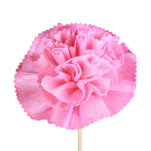 pink customized aromatherapygrass flowers aromatherapy accessories <strong>sakura</strong> dried flowers rattan grass flower