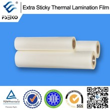 pre-coating polyester film