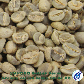 Wholesale unroasted coffee beans suppliers from Yunnan China