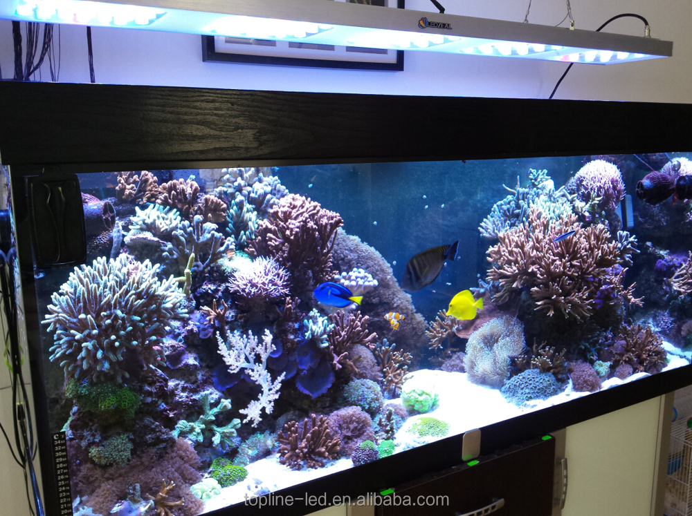 New Malibu S400 3W 150cm 5ft led aquarium light programmable