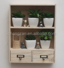 Colorful Potted Adorn Article Wooden Display Cabinet