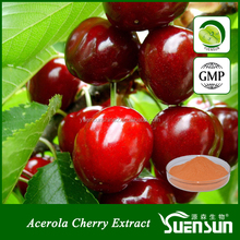 GMP factory supply fruit extract acerola cherry VC17%