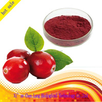 Different Specifications Cranberry Extract Uti 10:1, 50:1