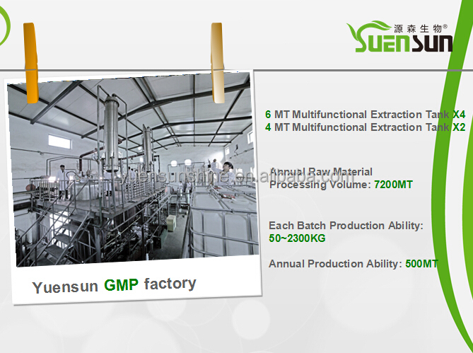 GMP Factory Supply Organic Kale Powder/Kale Extract