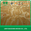 New Zealand Rotary cut Radiate pine veneer, logs / 1270x2550mm prices of veneer wood