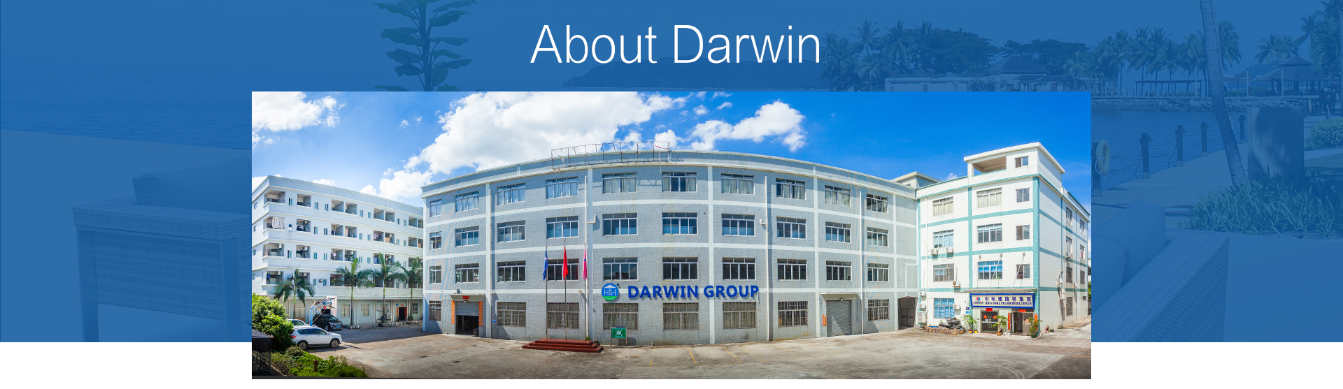 Foshan Darwin Furniture Co., Ltd. - Rattan Sofa, Rattan Dining Set