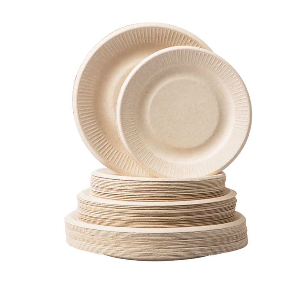 Biodegradable Compostable Plates Green Disposable Thali Cheese Round Dish