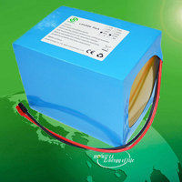 China Factory Supply Rechargeable 48v 20ah Lifepo4 Battery Pack