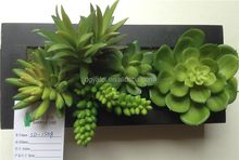 home&garden artificial succulent plants with wooden/plastic frame