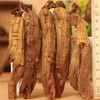 hong shen high quality china supplier korean red ginseng