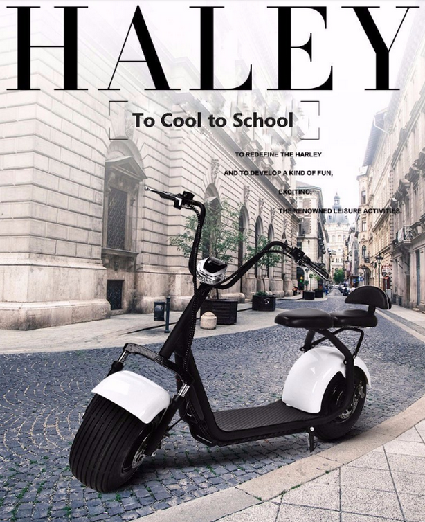 Haley popular <strong>city</strong> 2 wheels electric remote control scooter