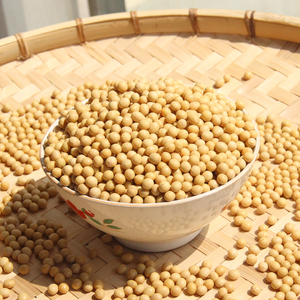 China organic soybeans prices