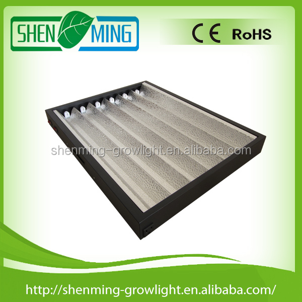 T5 HO fluorescent light fittings 6x24w