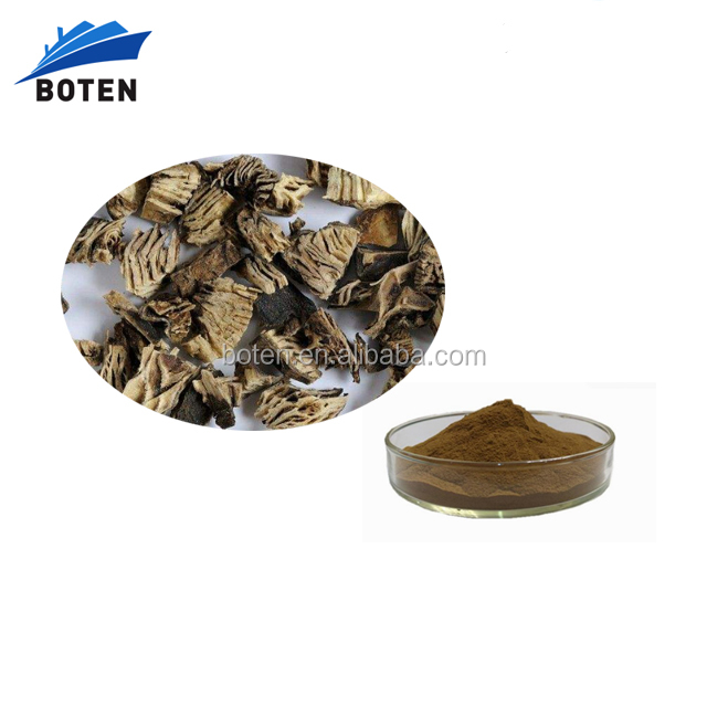 Natural China Black Cohosh Root Extract Powder with competitive price
