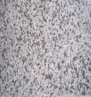 italian granite in China price