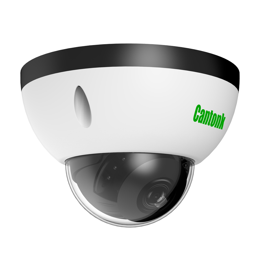 HD 1080P Onvif POE Sony CCD Security Dome Ip Camera