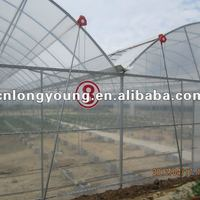 Commercial Agricultural Plastic Green House