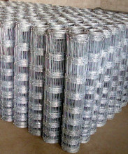 Hot Dipped Galvanized Horse / Sheep Wire, Cheap Cattle / Field Fencing