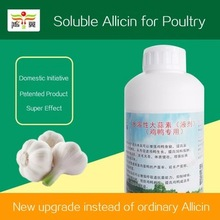 Good quality natural water solubility allicin /aged black garlic extract liquid