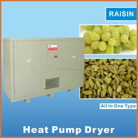 Hot air source heat pump dryer drying machine for vegetable and fruit IKE grape dehydrator oven