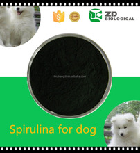 Supply Spirulina Powder , Fish Feed Spirulina , Spirulina for animal food