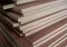 Bintangor veneer faced plywood products with E1, E2 glue