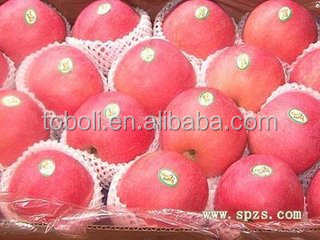 fresh apple fruit importers in europe