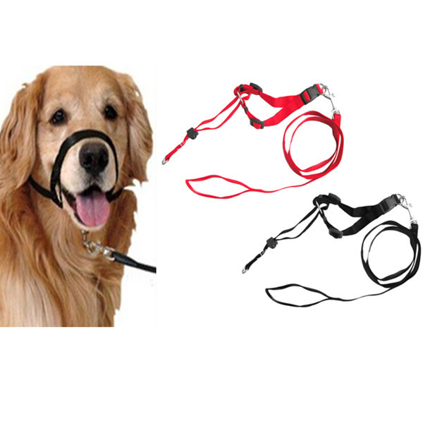 Professional Amazon Supply Bite Bark Muzzle Wholesale Nylon Dog Leash Rope Customized Available