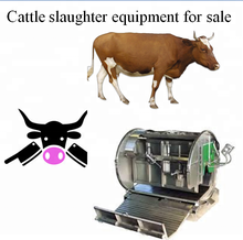Hahal cattle slaughter equipment for sale